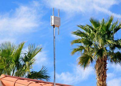 Desert Oasis Mobile Home & RV Resort palm trees
