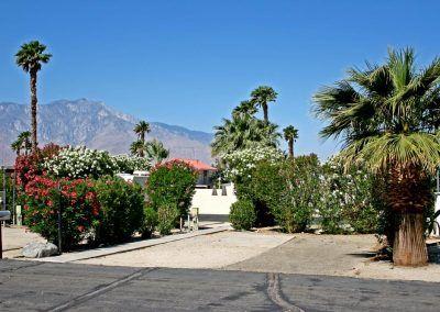 Desert Oasis Mobile Home & RV Resort site