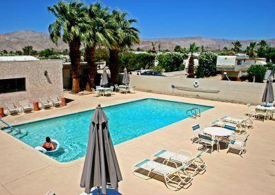 Desert Oasis Pool