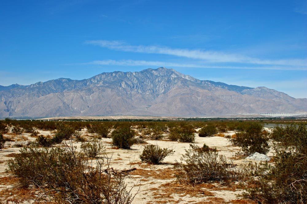 Desert Edge, CA RV Park views