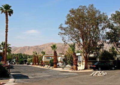 Desert Oasis Mobile Home & RV Resort View